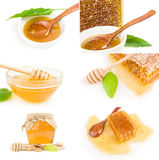 Set of Honey  on a white background cutout Stock Photography