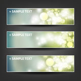 Set of Horizontal Banner or Header Background Designs - Colors: Grey, Green, White - For Party, Christmas, New Year Stock Photography
