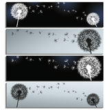 Set of horizontal banners black and grey with dand Stock Photography
