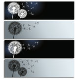 Set of horizontal banners with black and white dan Royalty Free Stock Image