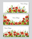Set of horizontal banners with flowers. Set of horizontal banners with  beautiful red poppies, chamomiles, green grass and leaves on white background. Vector Royalty Free Stock Photos
