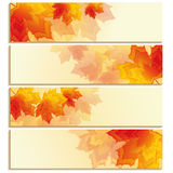 Set of horizontal banners with orange, red leaf maple Stock Photos