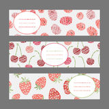 Set of Horizontal Fruit Banners. Harvest berry ornament. Vector. Royalty Free Stock Photography
