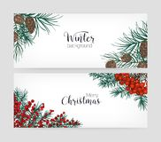 Set of horizontal holiday banners or backdrops with pine tree branches, cones, holly berries and place for text on white. Background. Elegant hand drawn vector stock illustration