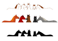 Set of horse group Royalty Free Stock Photo