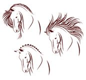 Set of 3 horse heads Stock Image