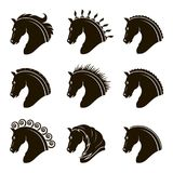 Set of horse heads Royalty Free Stock Photos