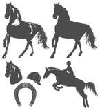 Set of horse,  horse rider and horseshoe. Set of flat horse,  horse rider and horseshoe Royalty Free Stock Images
