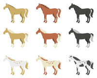 A set of horses of different breeds and color. Set of different types of horses in a flat style stock illustration
