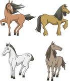 Set horses Stock Image