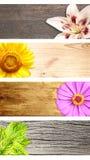 Set horyzontalni lato sztandary obraz stock