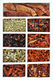 Set of hot spice chili peppers Stock Images