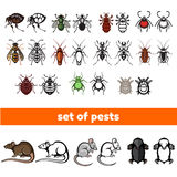 Set of household pests in pure style Royalty Free Stock Image