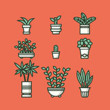 Set of houseplants in pots Stock Image
