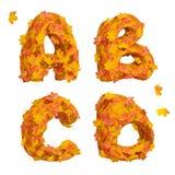 Set of huge autumn alphabet letters: A, B, C, D Stock Photos