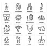 Set of Human Lungs, Big Lips, Nostril, Bladder, Heart, Blood Transfusion, Men Chest, Artery, Broken Bone icons. Set Of 16 simple  icons such as Human Lungs, Big Royalty Free Stock Images