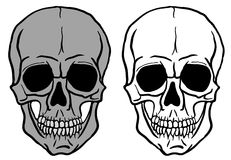Set of Human Skulls - vector Royalty Free Stock Photo