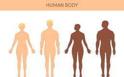Set of humans. Set of human's silhouettes. Male and female  figures, both Caucasian and African Stock Photo