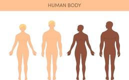 Set of humans Stock Photo