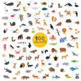 Set a hundred animals on the planet stock illustration