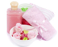 Set of Hygienic Cleansing Supplies Royalty Free Stock Images