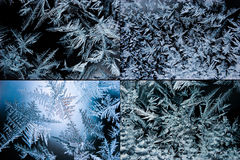 Set of ice crystals. Ice crystals on the window glass Stock Photography
