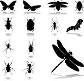 Set icons - 24. Insects. Set of twelve vector icons Stock Photography