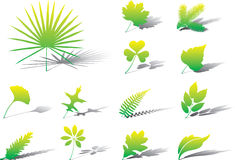 Set icons - 26A. Leaves Stock Photography
