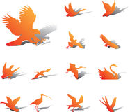 Set icons - 27A. Birds. Silhouettes of birds from all parts of the world for your design or business Royalty Free Stock Photos