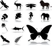 Set icons - 35. Nature Royalty Free Stock Photography