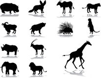 Set icons - 38. Animals. Set of 13 vector icons for web Royalty Free Stock Image