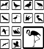 Set icons - 39B. Birds Stock Photography