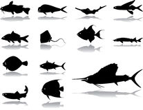 Set icons - 42. Fishes Royalty Free Stock Images