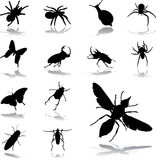 Set icons - 79. Insects stock illustration