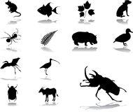 Set icons - 86. Nature vector illustration