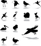 Set icons - 94. Birds Stock Images