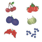 Set of icons berries. Set various berries on a white background (strawberry, plum, currant, gooseberry, blueberry, cherry Royalty Free Stock Photos