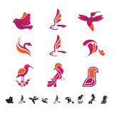 Set of icons with birds silhouettes Royalty Free Stock Images