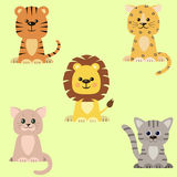 A set of icons of a cat, a tiger, a lion, a leopard . Stock Photos