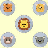 A set of icons in the circle of a cat, a tiger, a lion, a leopard . Stock Photography