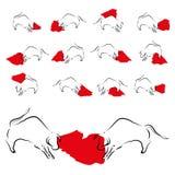 Set of icons of corrida bulls Stock Photos