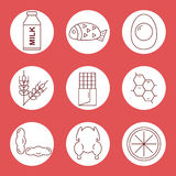 Set icons of food allergens. Icons food allergens in a circle on a red background. Stock Images