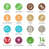 Set of food allergens Stock Photography