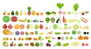 Set of icons of fruits and vegetables of different species are whole and in section. Set of cartoon icons isolated on white background. Colorful design for vector illustration