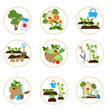 Set of icons with garden tools Royalty Free Stock Photo
