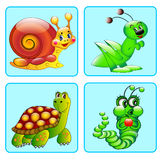 Set of icons with a grasshopper, caterpillar, turtle, snail Stock Photos