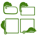 Set of icons with green chameleon. EPS10 Royalty Free Stock Photography