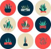 Set of icons of indoor flowers. Vector illustration of round shape icons of indoor flowers gardening Royalty Free Stock Photography