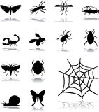 Set icons - 160. Insects Stock Images