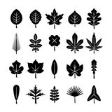 Set icons of leaf. Isolated on white vector illustration